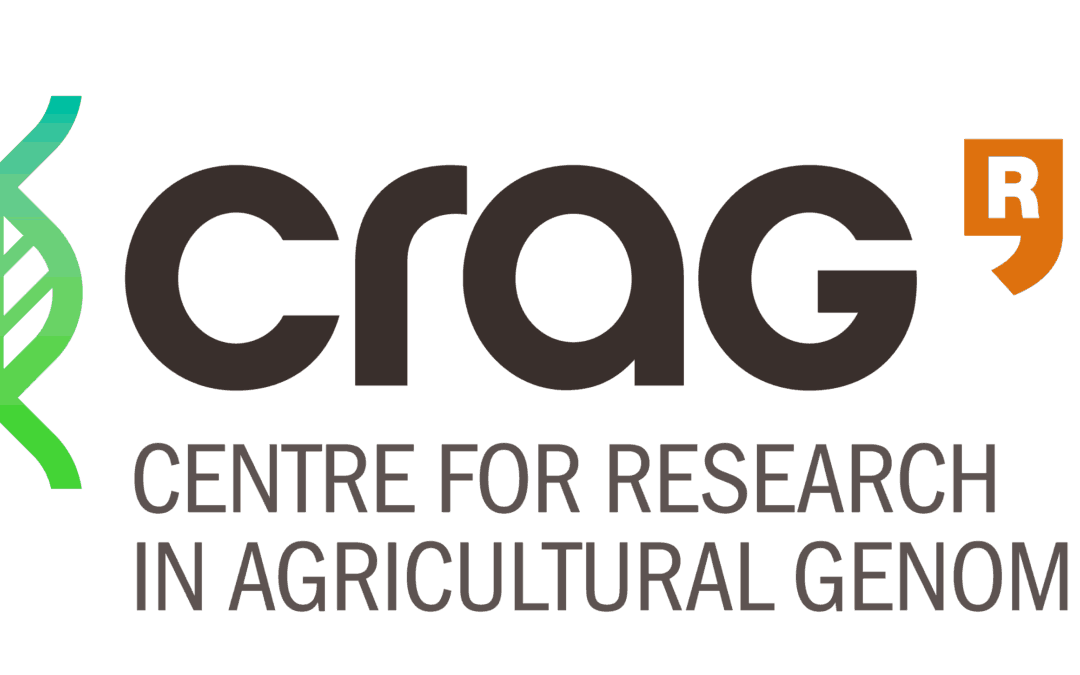 Postdoctoral position in genomic, proteomic, and genetic analyses of the regulatory network of flower development in Arabidopsis (Ref 23/2018)